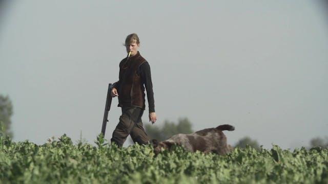 Jakt Med Stående Fågelhund