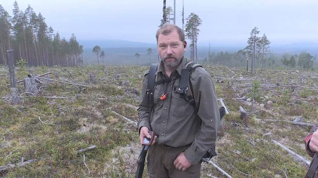Björnjakten 2015 : Del 3