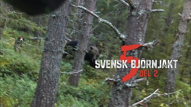 Svensk Björnjakt 5 Del 2