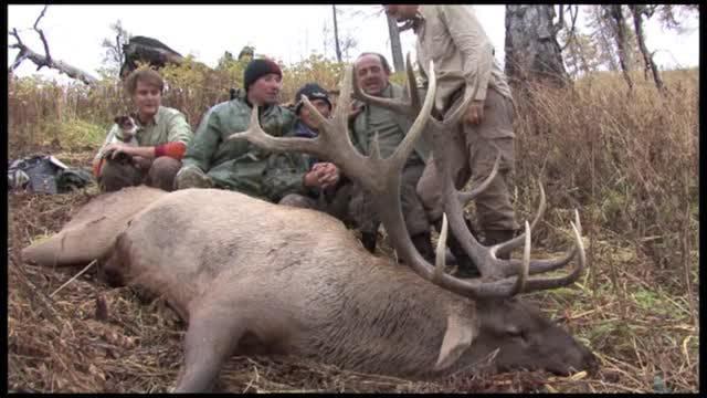 Seladang : Hjortjakt i Kazakstan