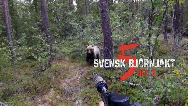 Svensk Björnjakt 5 Del 3