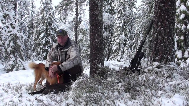 I Skogsfågelns Rike 4 : Kristoffer Clausen