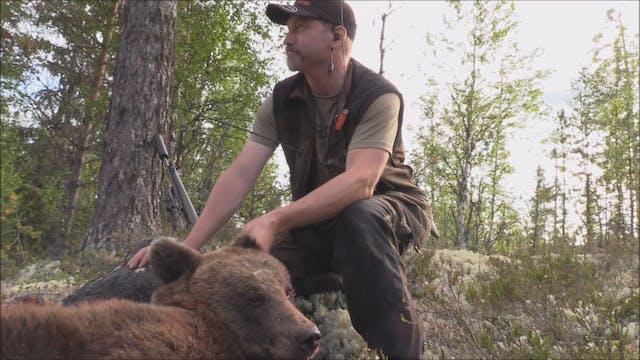 Björnjakten 2017 : Del 1