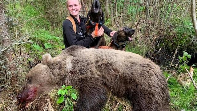 Björnjakten 2019 : Del 3