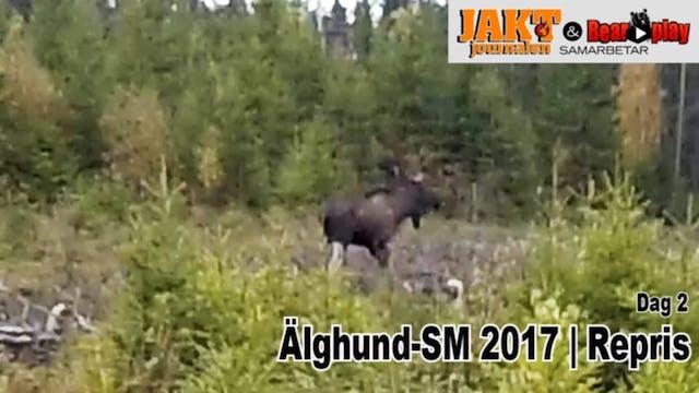 Älghund SM 2017 : Del 3