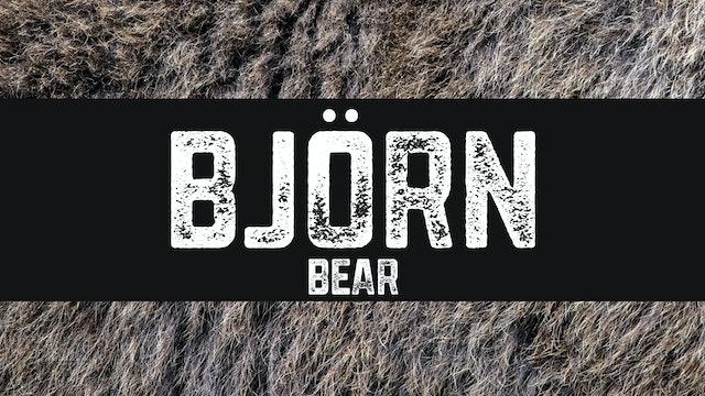 Björn | Bear