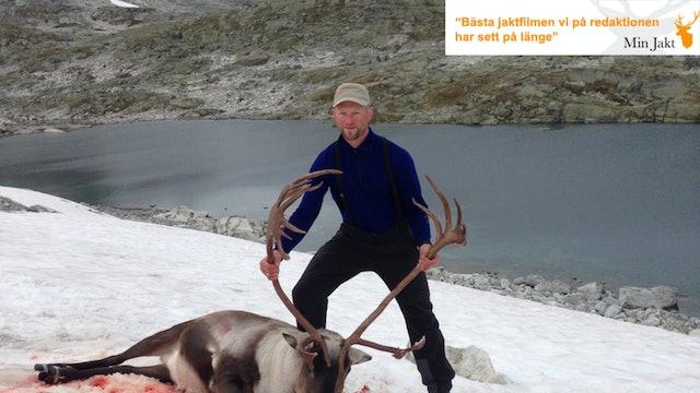 Vildrensjakt i Norge