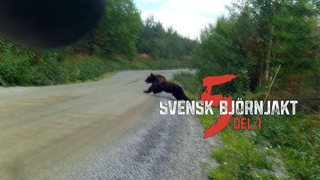 Svensk Björnjakt 5 Del 1