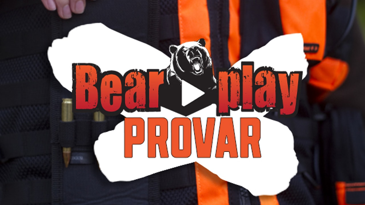 Bearplay Provar