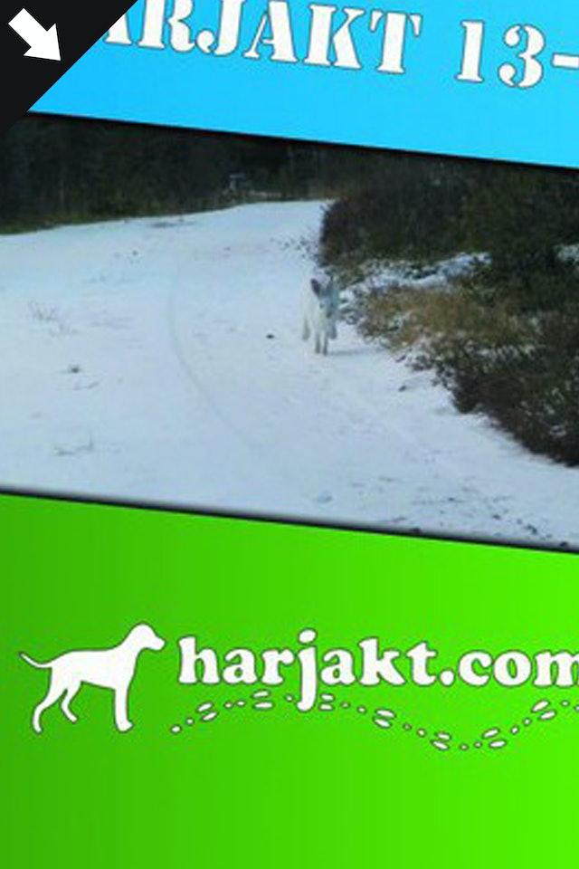 Harjakt.com : Harjakt 13-14