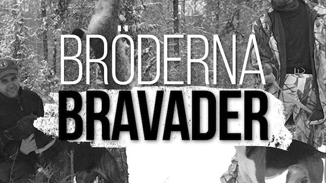 Bröderna Bravader
