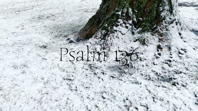 Simply Scripture Series: Psalm 136 (Episode 13)