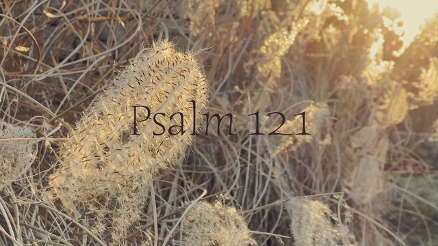 Simply Scripture Series: Psalm 121 (Episode 9)