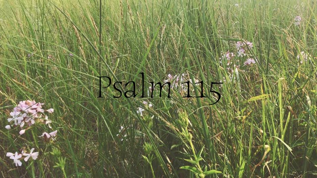 Simply Scripture Series: Psalm 115 (E...