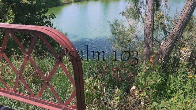 Simply Scripture Series: Psalm 103 (E...