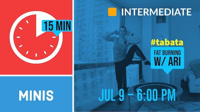 15 Minute Legs & Arms | 7/9/20 | Ari
