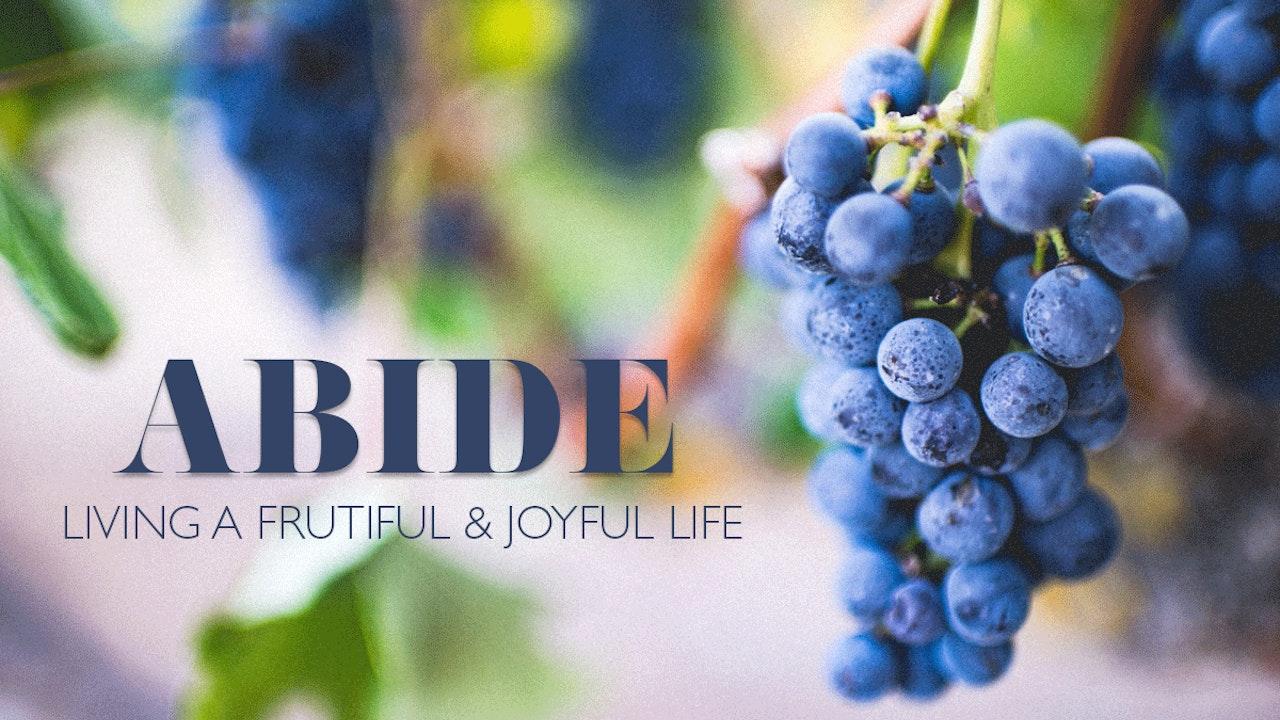 Abide Bible Study