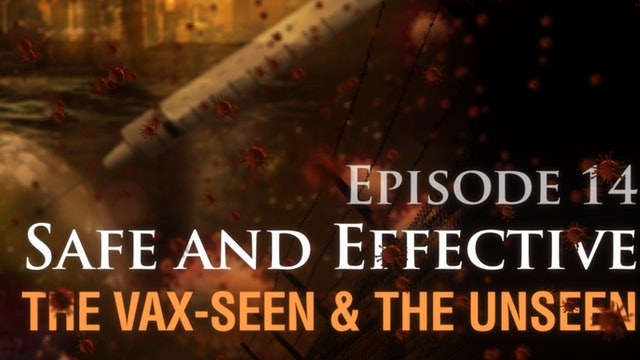 Safe and Effective: The Vax-seen and the Unseen, (video #14)