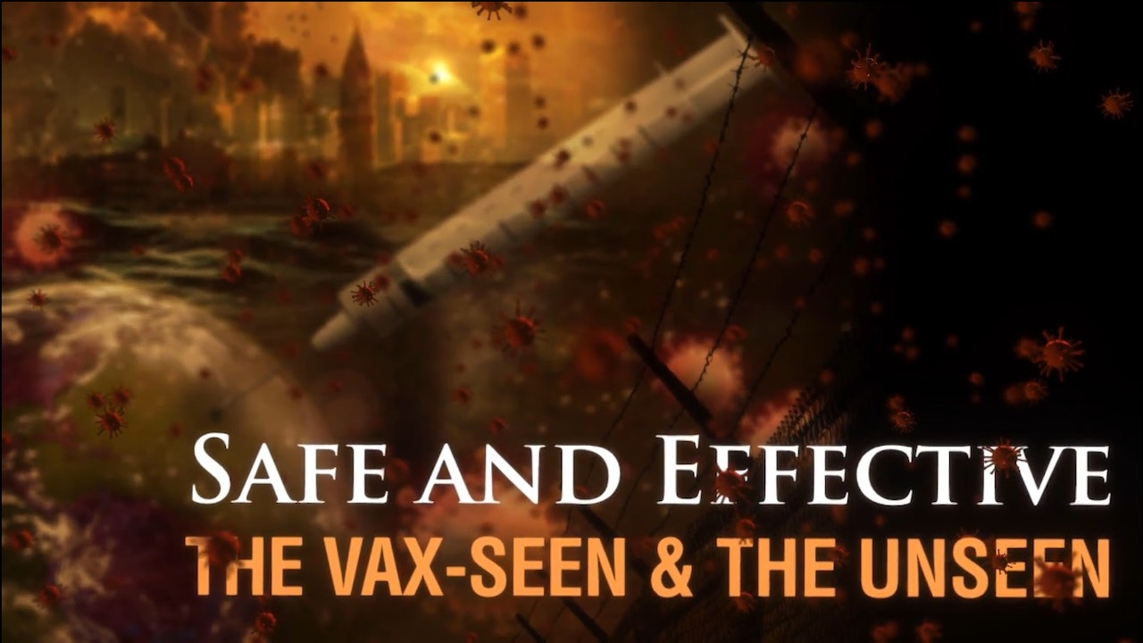 Safe and Effective: The Vax-seen and the Unseen