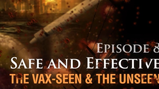 Safe and Effective: The Vax-seen and the Unseen (video #8)
