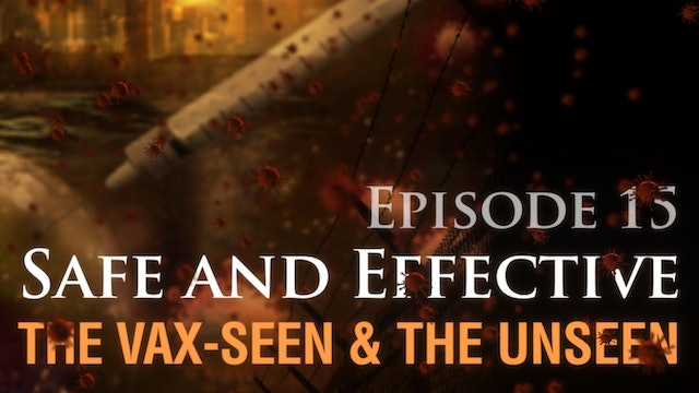 Safe and Effective: The Vax-seen and the Unseen, (video #15)