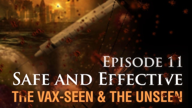 Safe and Effective:  The Vax-seen and the Unseen (video 11)
