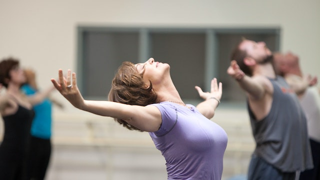 Shoulder Rolls with Pilé and Arm Circle Back