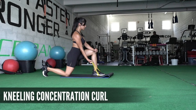 19 Kneeling Concentration Curl