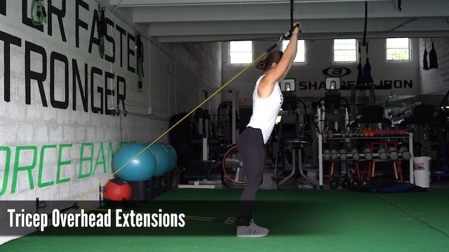 21_Tricep Overhead Extensions