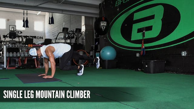 10 Single Leg Mountain Climber