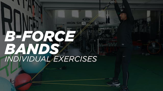 B-Force Bands - Individual Exercise Workout Library