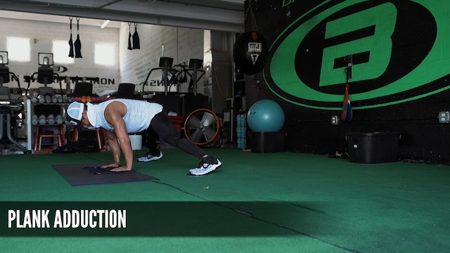 17 Plank Adduction