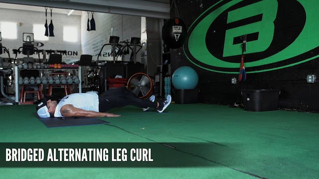 16 Bridged Alternating Leg Curl
