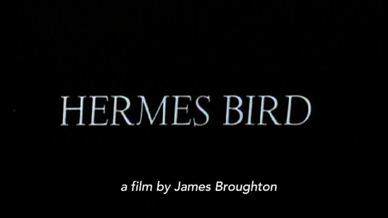 Hermes Bird (1979)