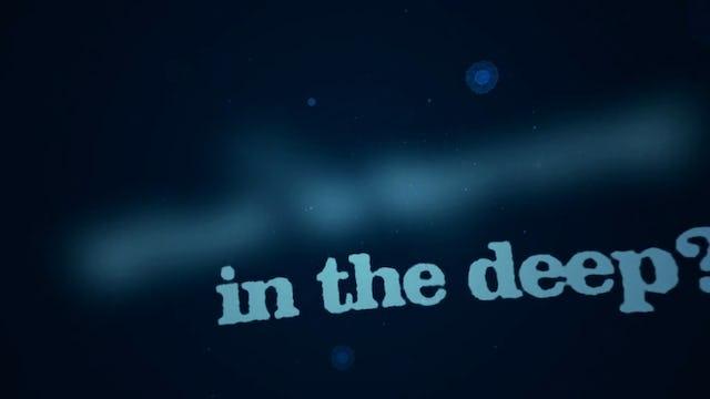 Big Joy theatrical trailer