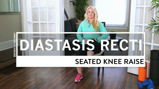 Seated Knee Raise