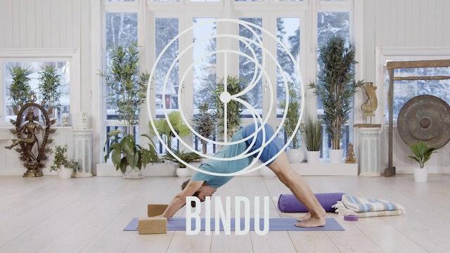 Bindu Onlinen joogaesittely minuutissa