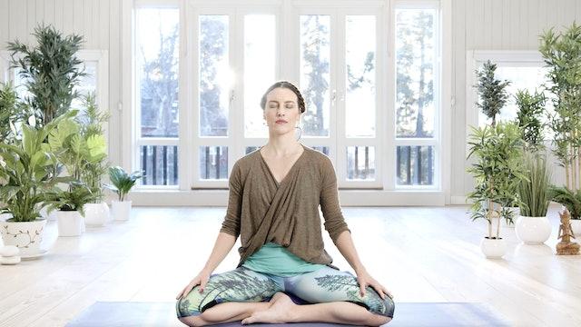 Tässä ja nyt -meditaatio / Mia Jokiniva / 15 min.