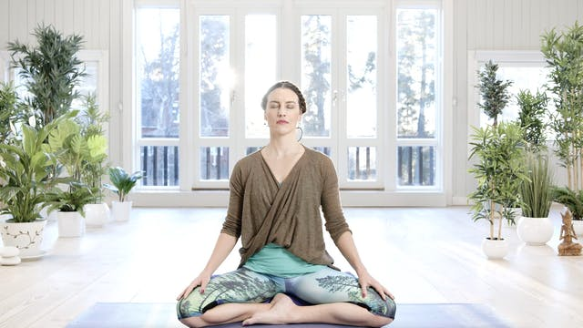 Tässä ja nyt -meditaatio / Mia Jokini...