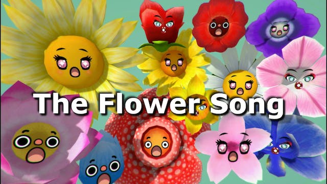 The Flower Song