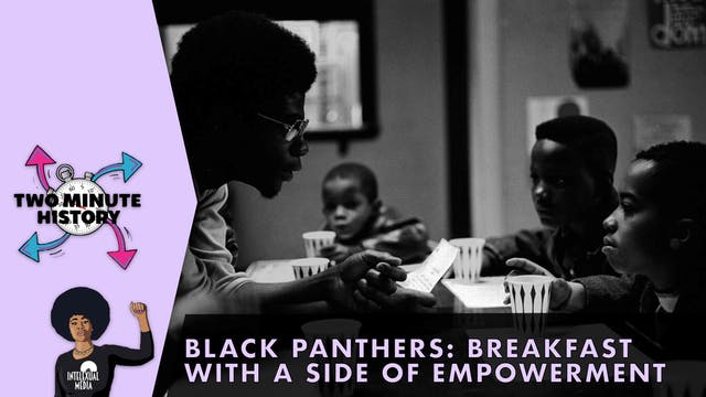 TWO MINUTE HISTORY | BLACK PANTHERS [...