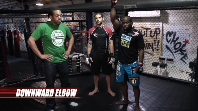 Martial Arts Minute Blasts: Downward ...