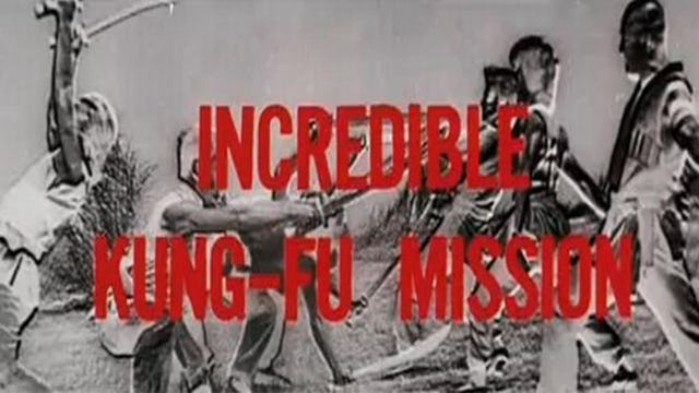 The Incredible Kung Fu Mission