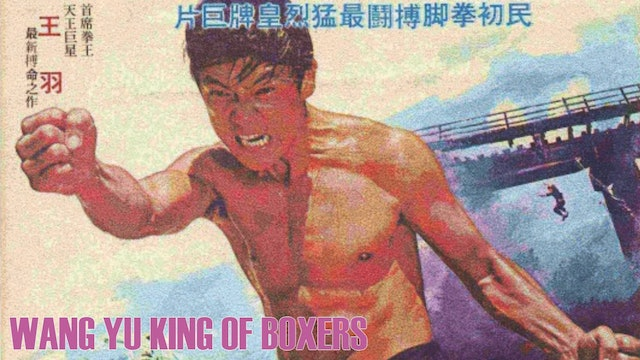 Wang Yu King of Boxers