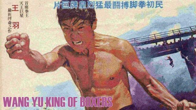 Wang Yu King of Boxers