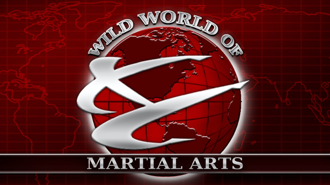 Wild World of Martial Arts Blurred