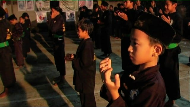 Tigers of Silat