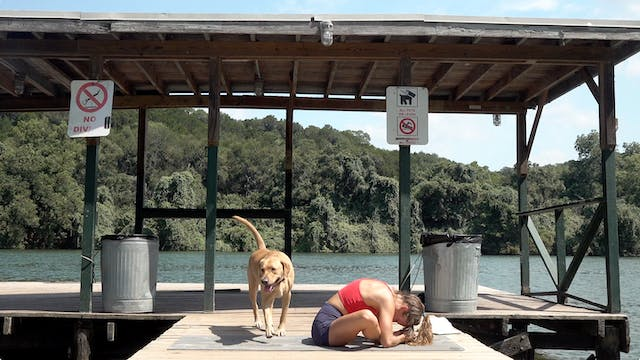 Dock, Dogs and Yoga