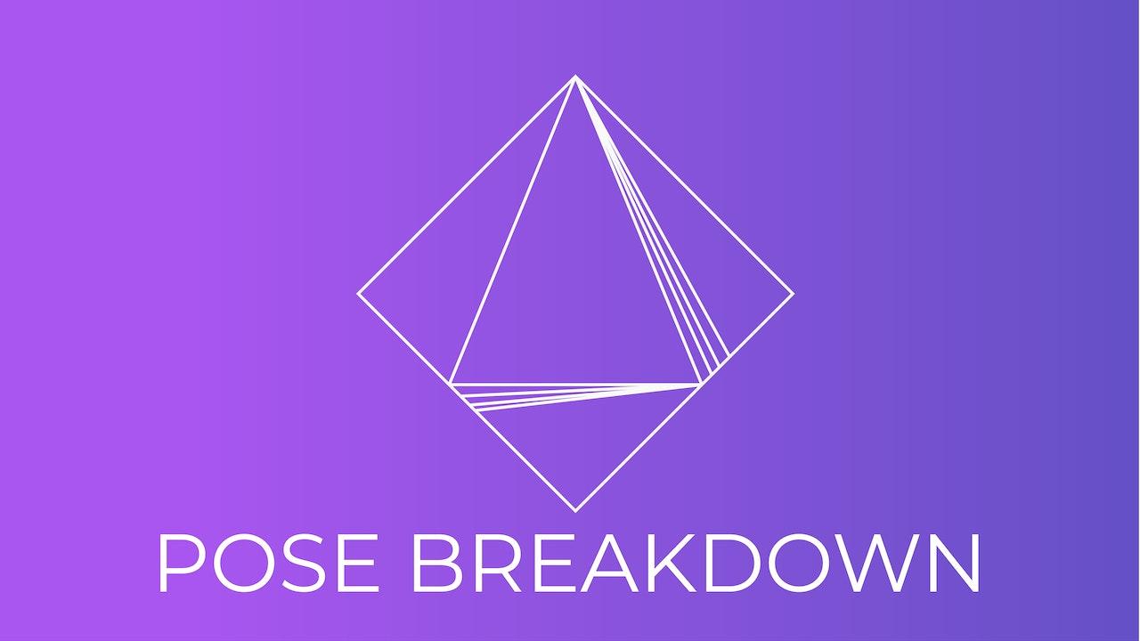 Pose Breakdown