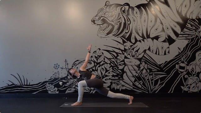 A Yoga Sampler